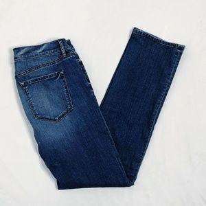 Ann Taylor Jeans Denim Modern Straight Dark (Z40)